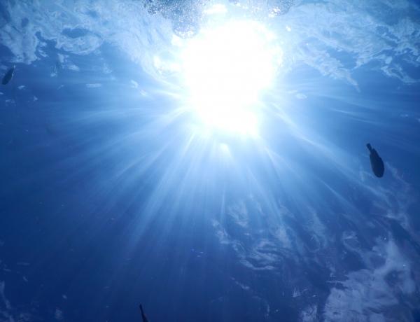 7/15 体験ダイビング&シュノーケリング