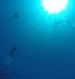海の戦士誕生