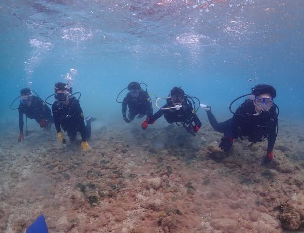 3/16 沖縄北部 体験ダイビング 若さのパワー全開!