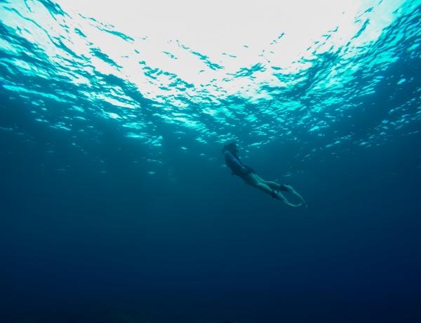 海に溶ける